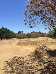 Los-Gatos-Pump-Track-2