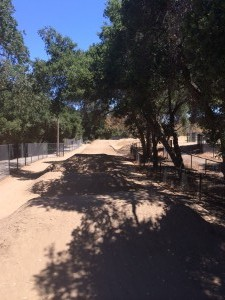 Los-Gatos-Pump-Track-4